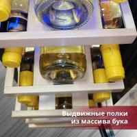 Винный шкаф Cold Vine C18-KST1_6