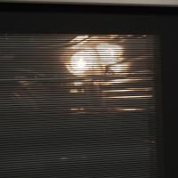 Газовый духовой шкаф Maunfeld MGOG.673S_7